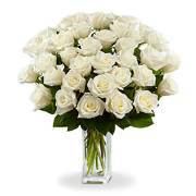 Unit cost of White Roses