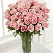 Bunch of Long Stem Pink Roses
