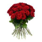 Long stem red roses bouquet