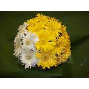 Centerpiece with gerbera daisy (different colors available)