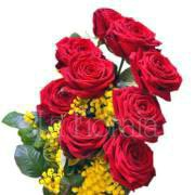 Rose rosse lunghe con mimosa